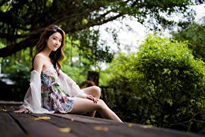 Bilder Asiaten Sitzt Kleid Bein Blick