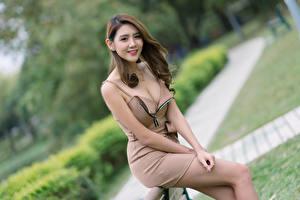 Bakgrundsbilder på skrivbordet Asiater Leende Pose Klänning Dekolletage Ser Bokeh Unga_kvinnor