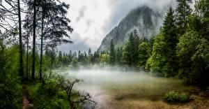 Photo Austria Mountains Lake Trees Fog Obertraun Nature