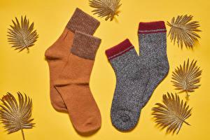 Bilder Herbst Farbigen hintergrund Socken Blattwerk