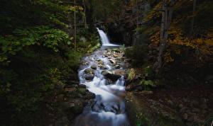 Fotos & Bilder Herbst Steine Bach Laubmoose Natur