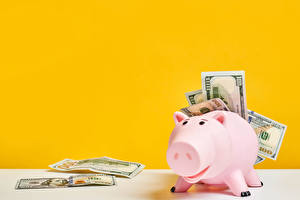 Desktop hintergrundbilder Papiergeld Geld Dollars Farbigen hintergrund Sparschwein