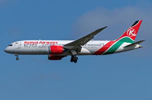 Bakgrundsbilder på skrivbordet Boeing Flygplan Passagerarplan Sidovy 787-8, Kenya Airways
