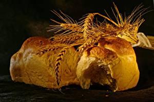 Desktop wallpapers Bread Wheat Ear botany Food