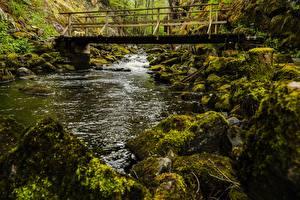 Pictures Bridges Rivers Stone Moss Nature