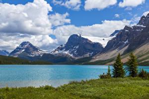 Bureaubladachtergronden Canada Een meer Berg Hemelgewelf Sneeuw Spar sparren Wolken Bow Lake Alberta
