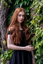 Hintergrundbilder Rotschopf Haar Blick Emilia