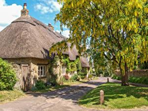 Fotos England Haus Blühende Bäume Dorf Great Rollright, Oxfordshire Städte