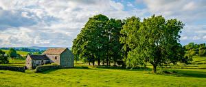 Sfondi desktop Inghilterra Panoramica Alberi Nubi Chelmorton Natura