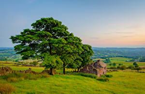 Tapety na pulpit Anglia Ruiny Krajobraz Drzewa Peak District, Roach end Barn przyroda