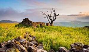 Bilder England Ruinen Stein Bäume Peak District Natur