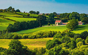 Bilder England Landschaftsfotografie Park Gebäude Bäume North York Moors National Park Natur