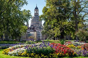 Sfondi desktop Germania Dresda Edificio Parchi Alberi