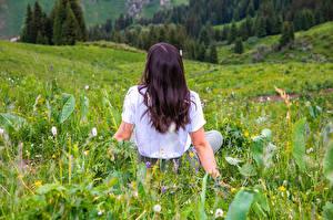 Desktop hintergrundbilder Grünland Gras Sitzen Hinten junge frau