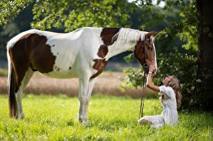 Sfondi desktop Cavallo Seduto Sorriso Erba Marion and Epalino Ragazze Animali
