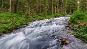 Fonds d'écran Italie Pierres Arbres Ruisseaux Rio Anterselva Nature
