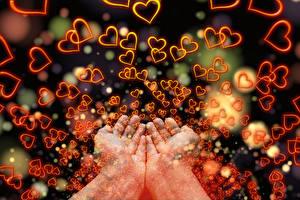 壁紙,很多,愛,手,心形符號,大自然,