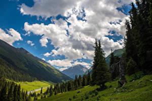 Desktop hintergrundbilder Berg Wolke Bäume Altyn Arashan, Kyrgyzstan Natur