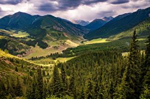 Bilder Berg Bäume Wolke Ein Tal Kok Jayik valley, Kyrgyzstan