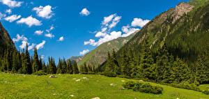 Hintergrundbilder Berg Landschaftsfotografie Bäume Wolke Altyn Arashan, Kyrgyzstan Natur
