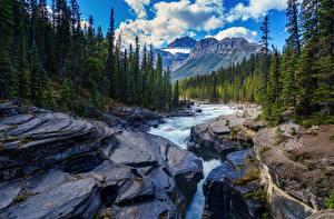 Bilder Fluss Wälder Gebirge Landschaftsfotografie Stein Natur