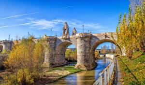 Images Spain Madrid Autumn River Bridge Sculptures Street lights Nature