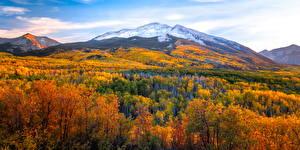 Fotos Vereinigte Staaten Herbst Berg Landschaftsfotografie Bäume Kebler Pass Natur