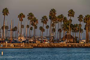 Sfondi desktop USA Litorale La casa Banchina Palme Shoreline Village Long Beach Città