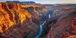 Bilder USA Grand Canyon Park Park Canyons Felsen Arizona Natur