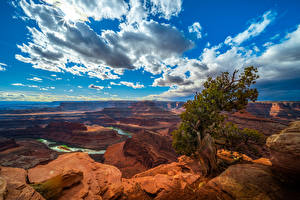 Bureaubladachtergronden Amerika Park Hemelgewelf Wolken Kloof klif landform Bomen Canyonlands National Park, Utah