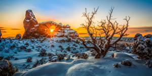 Photo USA Park Winter Sunrise and sunset Snow Trees Sun Arches National Park