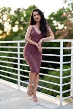 Photo Victoria Bell Pose Dress Brunette girl Hands Glance