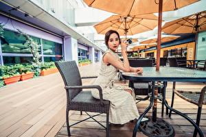 Fotos Asiatisches Café Sitzen Kleid Blick junge Frauen