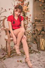 Bilder Asiater En stol Sitter Ben Fläta Brunhårig tjej Unga_kvinnor bilder