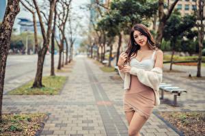 Bakgrundsbilder på skrivbordet Asiater Poserar Blick Suddig bakgrund Unga_kvinnor