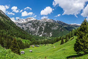 Images Austria Mountains Meadow Houses Alps Spruce Nature