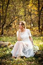 Sfondi desktop Autunno Bouquet Erba Foglia Vestito Sedute Spose giovane donna