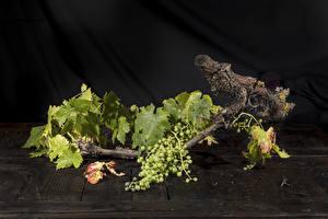 Tapety na pulpit Winogrona Gałęzie Liście przyroda