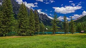 bilder Italia Fjell Innsjø Alpene Skyer Trær Lake Anterselva Natur bilder skrivebordsbakgrunn