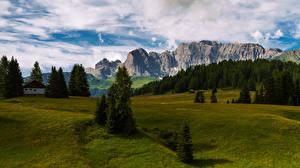 Bilder Italien Berg Landschaftsfotografie Alpen Bäume South Tyrol, Catinaccio