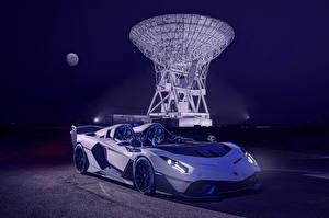 Fotos Lamborghini Roadster Weiß 2020 SC20