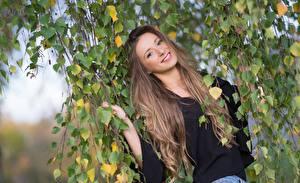 Fonds d'écran Branche Feuillage Aux cheveux bruns Voir Sourire Cheveux Merima Filles images