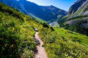 Images Mountains Park Trail Rock Ala Archa National Park, Kyrgyzstan