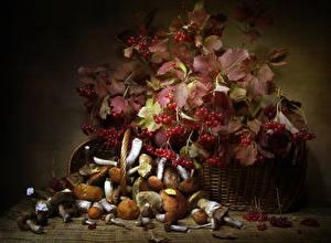 Sfondi desktop Funghi Ribes Natura morta Cesto Foglie Cibo