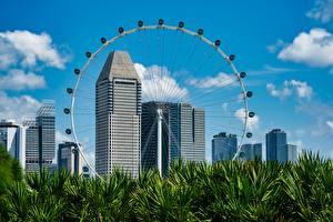 Fonds d'écran Singapour Gratte-ciel Herbe Grande roue Flyer