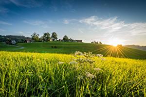 Desktop wallpapers Switzerland Fields Building Sunrise and sunset Rays of light Linner Linde Nature