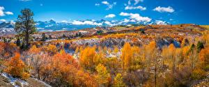 Desktop hintergrundbilder Vereinigte Staaten Herbst Berg Panoramafotografie Landschaftsfotografie Bäume Dallas Divide Natur