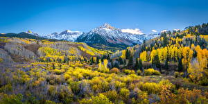 Sfondi desktop Stati uniti Autunno Montagne Paesaggio Panorama Mount Sneffels Natura
