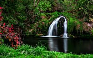 Fonds d'écran Chute d'eau Herbe Arbrisseau Nature